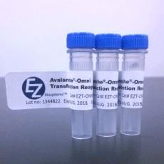 Avalanche®-Omni Transfection Reagent